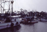 Shrimp boats in Bayou La Batre, Alabama.