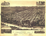 """Perspective Map of Tuskaloosa, Alabama."""