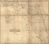 """A Plat Exhibiting the State of the Surveys in the State of Florida with References."""