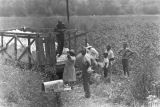People standing around a trailer of cotton in a field near Mount Meigs in Montgomery County,...