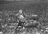 Two people sitting in the cotton field of Mrs. Minnie B. Guice near Mount Meigs in Montgomery...