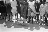 Dog in front of a crowd outside Martin Luther King, Jr.'s funeral.