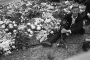Photographer seated beside the floral arrangements at Martin Luther King, Jr.'s grave site at...