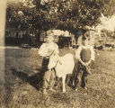 Two young boys with a goat.