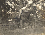 Young woman, possibly Harriett Pinkston Engelhardt, on horseback.