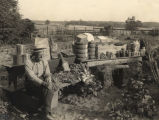 T. A. Whatley with his agricultural products.