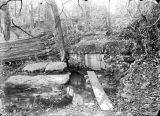 Cave spring on a farm in Lawrence County, Alabama.