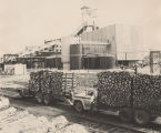 Trucks full of short logs parked outside a paper mill in Alabama.