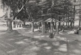 Concrete picnic sheds in a grove of cypress trees at Lake Jackson in Florala, Alabama.