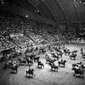Parade of horses and riders in the arena during a rodeo at Garrett Coliseum in Montgomery, Alabama.