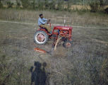 African American man on a red McCormick-Deering Farmall Cub tractor, in a field on Price...