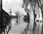 Randolph Street in Montgomery, Alabama, after a flood.