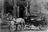 Horse and carriage in front of the Loveless-Hack-Murphy house in Montgomery, Alabama.