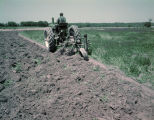 Man plowing with a John Deere tractor beside a field of crimson clover, probably in Autauga...