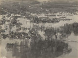 Aerial view of Brewton, Alabama, after the Conecuh River flooded.