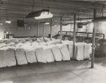 Bales of cotton inside a factory in Alabama.