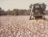 Mechanical cotton picker in a field on the Datcher family farm in Harpersville, Alabama.