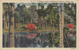 Mirror Lake in Bellingrath Gardens, Mobile, Ala.