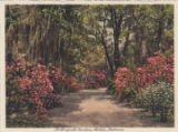 Bellingrath Gardens, Mobile, Alabama.