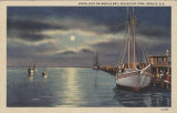 """Moonlight on Mobile Bay, Arlington Park, Mobile, Ala."""