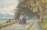 """Mobile, Ala. A View of Shell Road."""