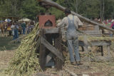Man operating a cane mill during Sorghum Sopping Days, a festival in Waldo, Alabama.