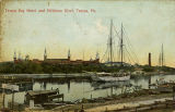 """Tampa Bay Hotel and Hillsboro River, Tampa, Fla."""