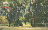 """Entrance to Riverside Park, Jacksonville, Fla."""