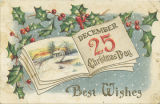 """Best Wishes"" Christmas card."