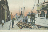 """Fruit Co.'s Docks, Mobile, Ala."""