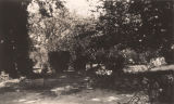 Garden near the front entrance to the McCreory [McCrary?] home in Turnbull, Alabama.