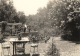 Cut dahlias and zinnias in baskets and blooming crepe myrtles in Mrs. T. S. Moore's garden on...