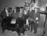 Grand Champion bull of the Southern Regional Angus Show and Sale at Garrett Coliseum in...