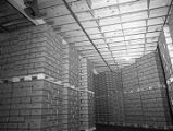 Boxes packed with pickles in a warehouse at Whitfield Foods, Inc., in Montgomery, Alabama.
