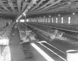 Interior of a house on the F. H. Falls and Sons chicken farm in Montgomery County, Alabama.