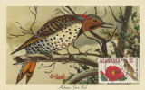"""Alabama State Bird."""