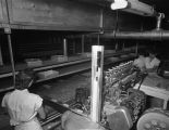 Employees shaping and wrapping Payday bars at the Hollywood Nut Products Company at 8 Lafayette...