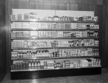 Health and beauty aids display in the showroom of Hudson-Thompson, Inc., wholesale grocers at 4750...