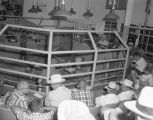 Cattle auction at the W. H. Hodges and Company stockyards at 1451 Parallel Street in Montgomery,...