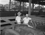 Men with cattle in the pens at Union Stock Yards at 1451 Parallel Street in Montgomery, Alabama.