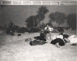 People resting and sleeping on the grass outside the airport in Montgomery, Alabama, during the...