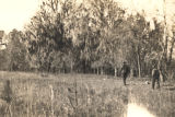 Site of Holy Ground, a Creek Indian settlement in present-day Lowndes County, Alabama.