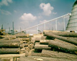 Pile of logs at the Sumter Plywood Company in Livingston, Alabama.