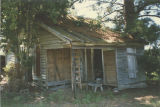 General view of the front and side room of a spraddle-roof house in Bertha, Alabama.