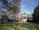 Azaleas and cherry tree blooming in the front yard of John M. Ward at 1533 Gilmer Avenue in...