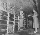 Copy photograph of two women (possibly Mamie Mullen and Fannie Hails) in a records storage area in...