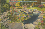"""Beautiful Rock Garden and Pool in Birmingham, Alabama."""