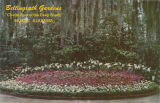 """Belingrath Gardens / 'Charm Spot of the Deep South' / Mobile, Alabama"""