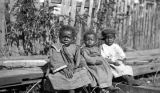 Three African American children in front of a wooden fence in rural Wilcox County, Alabama.