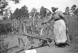 African American woman with a spinning wheel in a dirt yard, probably in Furman, Alabama.